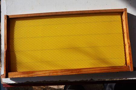 closeup view of empty honeycomb. Standard-Bild