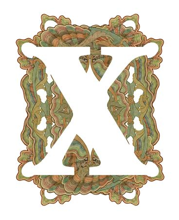 Luxuriously illustrated old capital letter X . photo