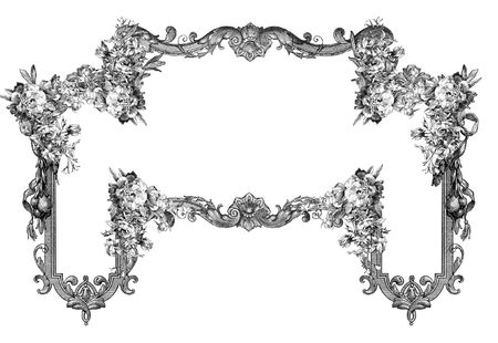 Luxuriously illustrated old victorian frame. photo