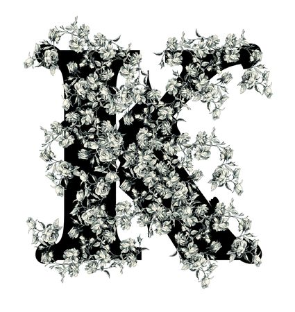 Luxuriously illustrated old capital letter K with flowers. photo