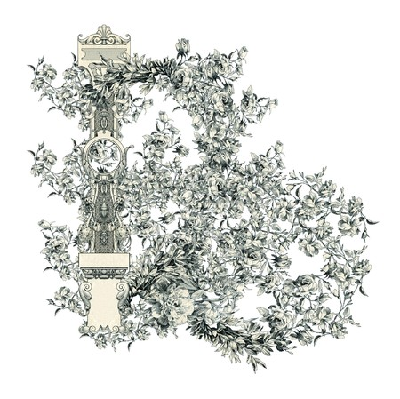 luxuriously: Luxuriously illustrated old capital letter B with flowers.