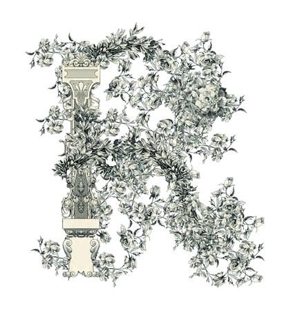 r image: Lujosamente ilustrado antiguo letra de capital R con flores.