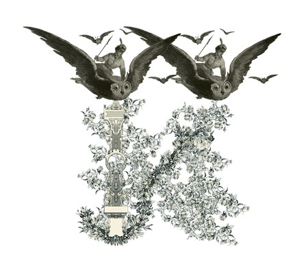 Luxuriously illustrated old capital letter N with flowers and girl flying to the owl. photo