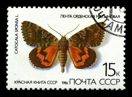 USSR - CIRCA 1986: Two stamp printed in USSR shows image of the Butterfly Ribbon Raspberry circa 1986.
