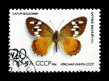 USSR - CIRCA 1986: Two stamp printed in USSR shows image of the Butterfly Satyr Bishoff circa 1986.