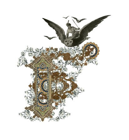 Luxuriously illustrated old capital letter F with flowers and girl flying to the owl.