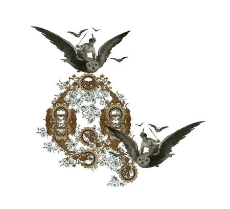 Luxuriously illustrated old capital letter Q with flowers and girl flying to the owl. photo