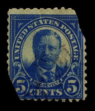 circa: USA - CIRCA 1930: A stamp printed in USA shows Portrait President Theodore  Editorial