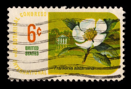 usps: USA - CIRCA 1984: A stamp printed in USA shows image of the dedicated to the Flower Franclinia Alatamaha circa 1984.