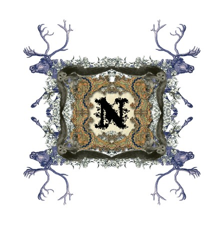 The Victorian capital letter N with four owls and four deer. photo