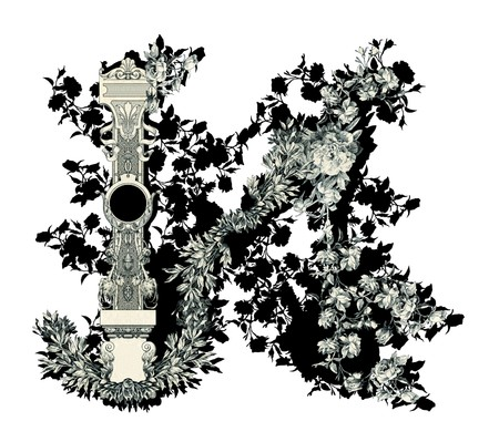 Luxuriously illustrated old capital letter N with flowers. photo