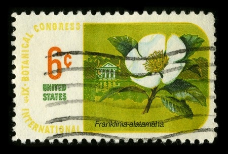 USA - CIRCA 1980: A stamp printed in USA shows image of the dedicated to the Botanical Congress International circa 1980. Stock Photo - 7840482