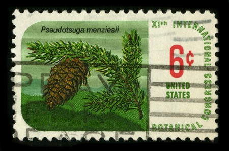 USA - CIRCA 1980: A stamp printed in USA shows image of the dedicated to the Botanical Congress International circa 1980. Stock Photo - 7840483