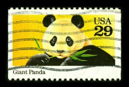 USA - CIRCA 1980: A stamp dedicated to The giant panda, or panda (Ailuropoda melanoleuca, literally meaning  Stock Photo - 8645080