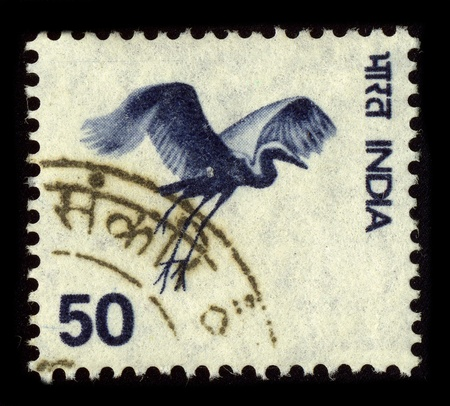 indian postal stamp: INDIA-CIRCA 1980:A stamp printed in INDIA shows image of the Indian crane, circa 1980.
