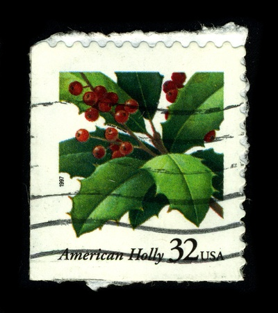 USA-CIRCA 1997:A stamp printed in USA shows image of the Ilex opaca (American Holly) is a species of holly, native to the eastern United States, from coastal Massachusetts south to central Florida, and west to southeastern Missouri and eastern Texas, circ