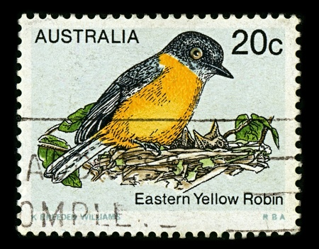 AUSTRALIA-CIRCA 1979:A stamp printed in AUSTRALIA shows image of The Eastern Yellow Robin (Eopsaltria australis) is an Australasian robin of coastal and sub-coastal eastern Australia, circa 1979.