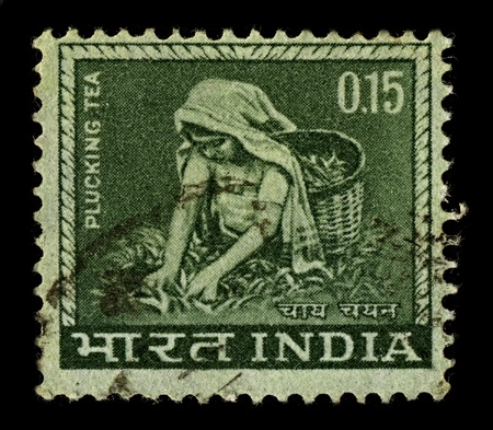 INDIA-CIRCA 1965:A stamp printed in INDIA shows image of tea pickers, circa 1965. Stock Photo - 10321631