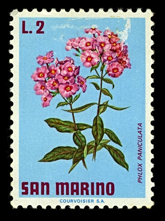 plants species: SAN MARINO-CIRCA 1971:A timbro stampato a SAN MARINO mostra immagine di Phlox � un genere di 67 specie di piante annuali e perenni trovati principalmente in Nord America (uno in Siberia), intorno al 1971.