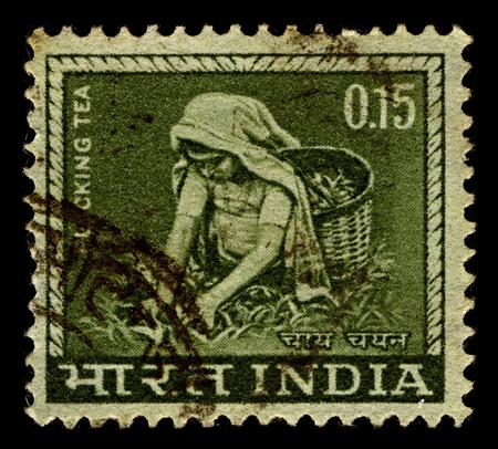 India-CIRCA 1965:A stamp printed in India shows image of tea collection, circa 1965.