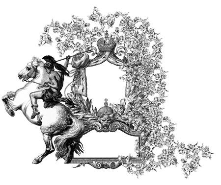 Luxurious Victorian frame