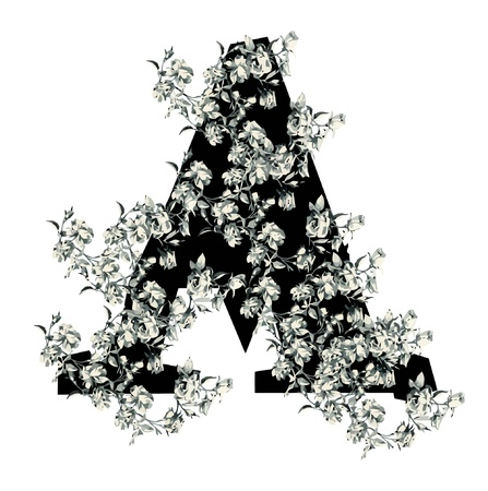 Capital letter A from flowers in vector. Vector