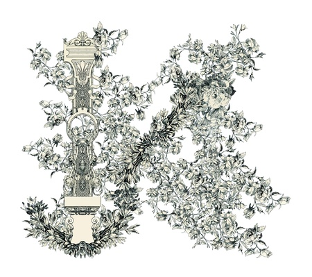 Capital letter N from flowers in vector. Vector