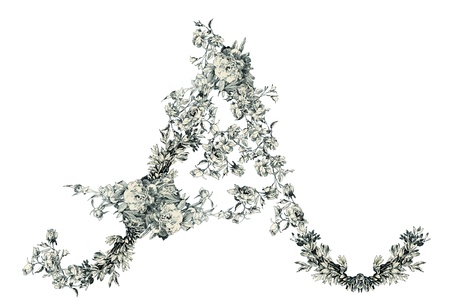 old victorian letter: Capital letter A from flowers in vector.