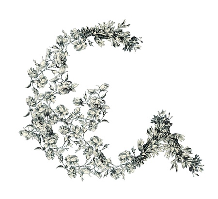 Capital letter G from flowers in vector. Vector