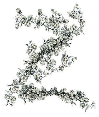 Capital letter Z from flowers Vector