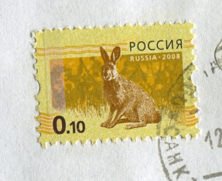 mediaval: RUSSIA - CIRCA 2008: A stamp printed in Russia shows image of the hare on yellow background, circa 2008. Editorial