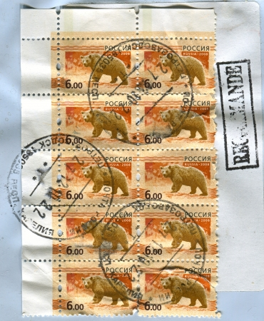 mediaval: RUSSIA - CIRCA 2008: A stamp printed in Russia shows image of the bear on orange background, circa 2008.