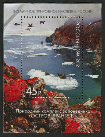 mediaval: RUSSIA - CIRCA 2012: A stamp printed in Russia shows image of the Wrangel Island, circa 2012.