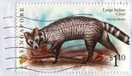 SINGAPORE - CIRCA 2007: A stamp printed in Singapore shows image of Large Indian Civet, circa 2007.  Stock Photo - 18479100