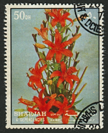 botanica: EMIRATE OF SHARJAH - CIRCA 1972: A stamp printed in Emirate of Sharjah shows image of the  Flower, sometimes known as a bloom or blossom, is the reproductive structure found in flowering plants (plants of the division Magnoliophyta, also called angiosperm