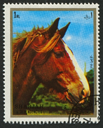 extant: EMIRATE OF SHARJAH - CIRCA 1972: A stamp printed in Emirate of Sharjah shows image of The horse (Equus ferus caballus) is one of two extant subspecies of Equus ferus, or the wild horse, circa 1972.