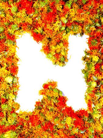 calendula: Initials letter N. Stock Photo