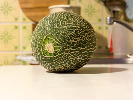 natur: The natur vegetable Melon object.