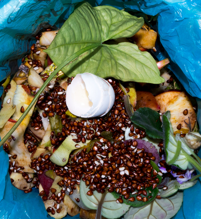 leavings: The food garbage texture and objects. Stock Photo