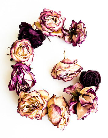 Rose dried Initials letter G.
