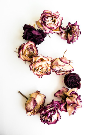 Rose dried Initials letter S.