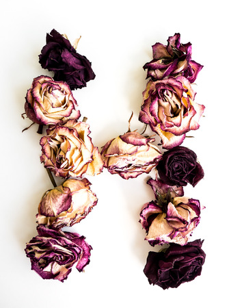 Rose dried Initials letter H.