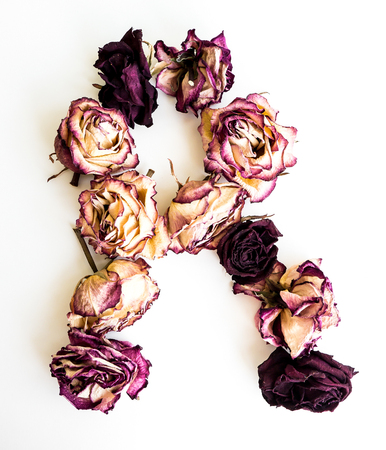 Rose dried Initials letter R.