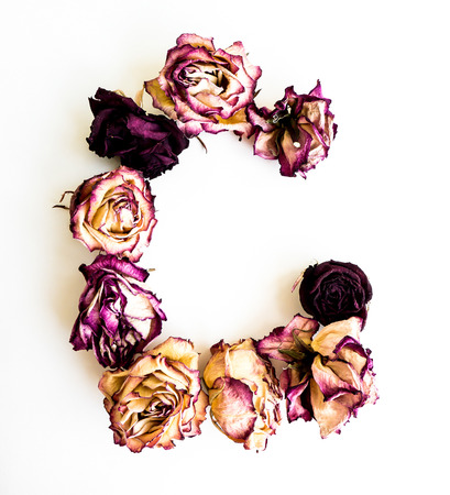 initials: Rose dried Initials letter ?.