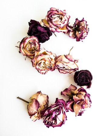 initials: Rose dried Initials letter S.