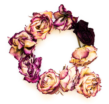 Rose dried Initials letter Q.