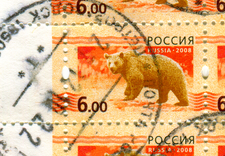 GOMEL, BELARUS, APRIL 7, 2017. Stamp printed in Russia shows image of  The Bears are carnivoran mammals of the family Ursidae, circa 2008. Editorial