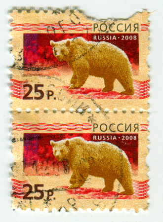 GOMEL, BELARUS, APRIL 15, 2017. Stamp printed in Russia shows image of  The Bears are carnivoran mammals of the family Ursidae, circa 2008. Editorial