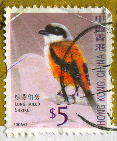 philately: GOMEL, BELARUS, APRIL 18, 2017. Stamp printed in Hong Kong, China shows image of  The Long-tailed Shrike, circa 2006.