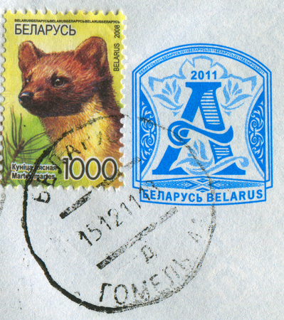 torn: GOMEL, BELARUS, APRIL 18, 2017. Stamp printed in Belarus shows image of  The European pine marten (Martes martes), known most commonly as the pine marten in Anglophone Europe, circa 2008.